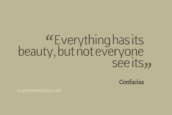 "Everything has its beauty, but not everyone see its."" - Confucius"